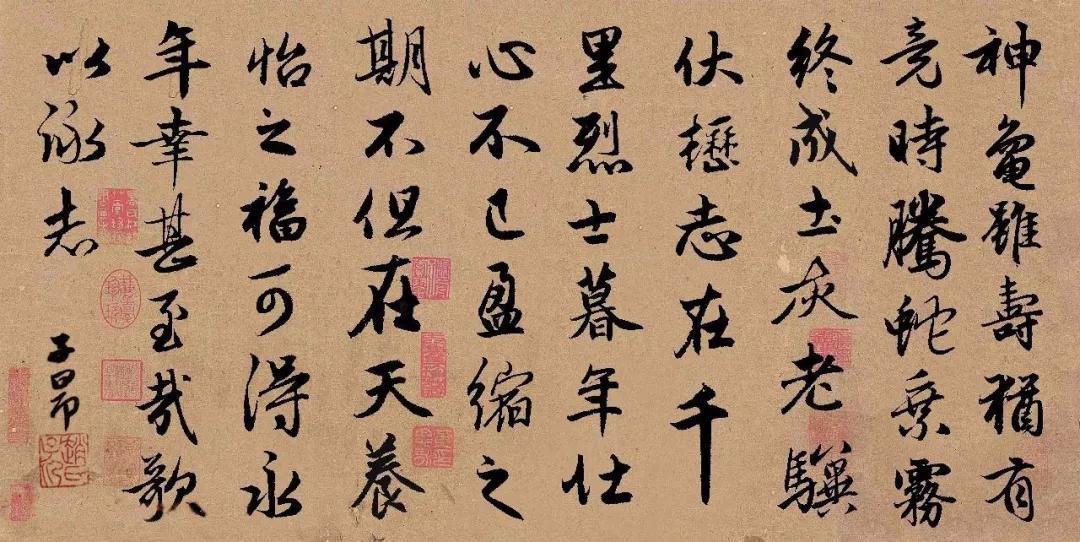 赵孟頫集字《龟虽寿》,很精彩!